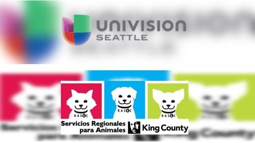 univisionsea-raskc