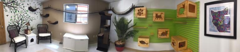 new colony room